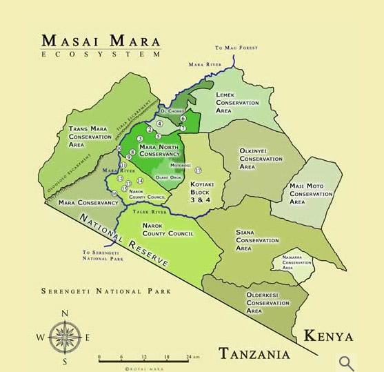 肯尼亚动物大迁徙-携程旅游-携程旅行网