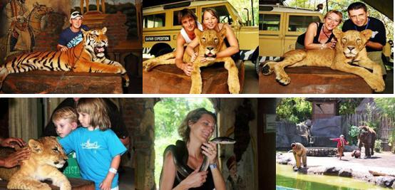 >>巴厘岛野生动物园