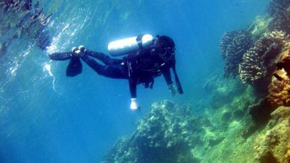 潜水+水下kiss+分界洲岛观光一日游(赠送水下电子照)