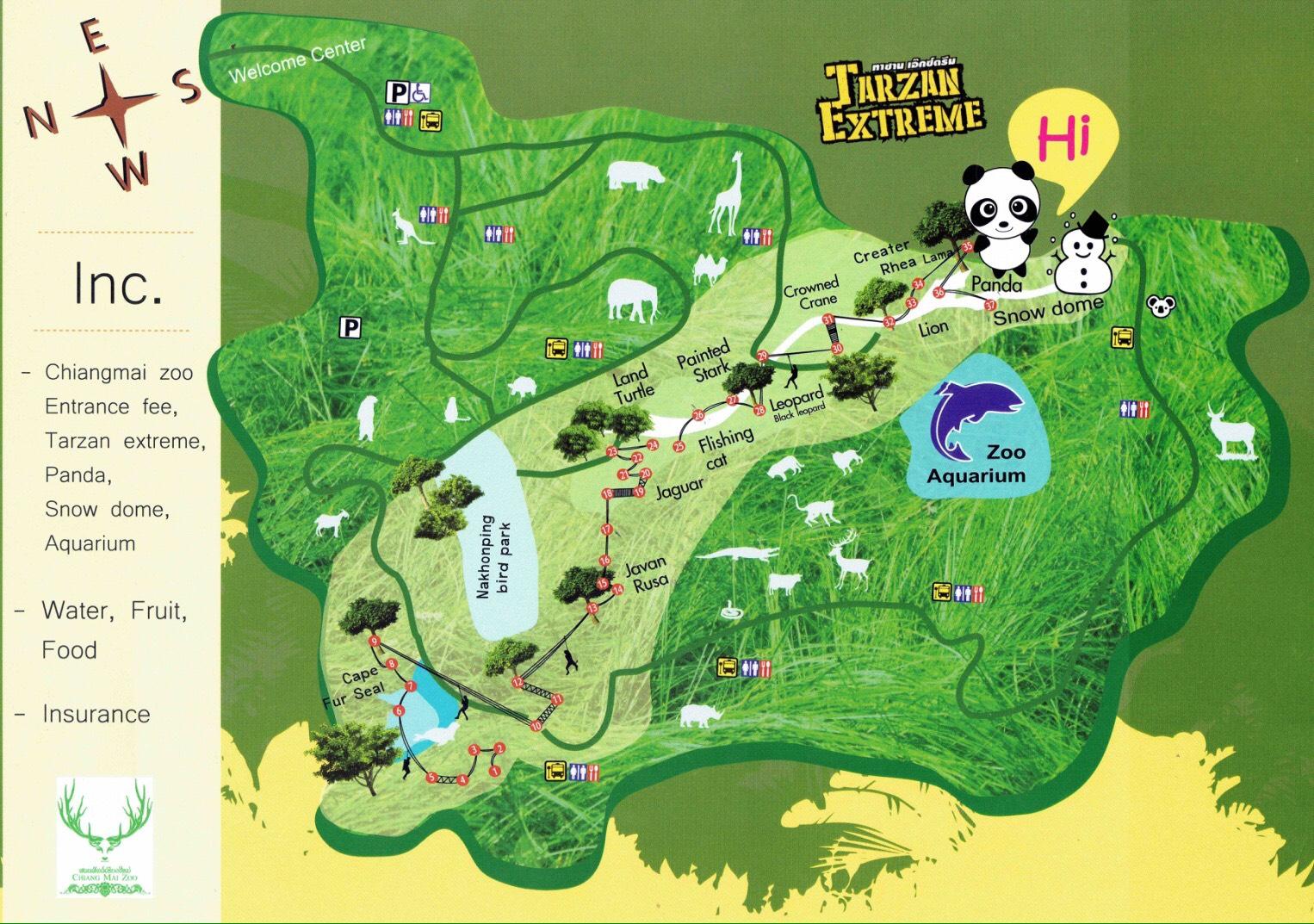 【亲子自然体验】清迈日间动物园 泰山丛林飞跃之旅