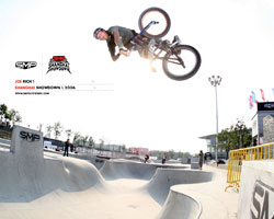 SMP Skatepark Single Entry