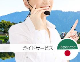 プライベートツアーガイド:日本語を話す(8時間)