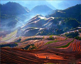 [1-Day Tour] Longji Rice Terraces (Group)