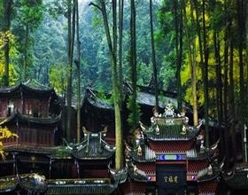 [1-Day Tour] Dujiangyan & Qingcheng Shan (Private)