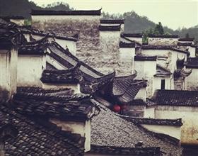 [Half-Day Tour] Hongcun Village (Group)