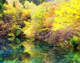 [1-Day Tour] Huanglong National Park (Private)