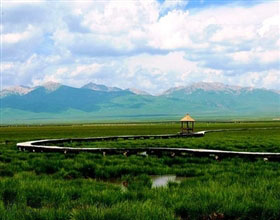 [1-Day Tour] Zoige Grasslands & First Bend of Yellow River (Private)