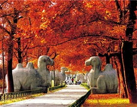 [2-Day Tour] Nanjing City Highlights (Private, 4-star)