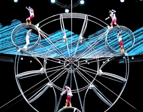 Shanghai ERA Acrobats & Evening City Lights Tour (Private, no-shopping)