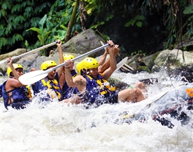 [1-Day Tour] Ayung River Rafting Morning A (10:00 Start, Group)