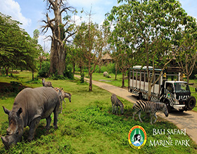 [Ticket] Bali Safari & Marine Park (4x4 gold package)