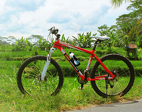 [1-Day Tour] Sobek Ubud Adventure Cycling (Group)
