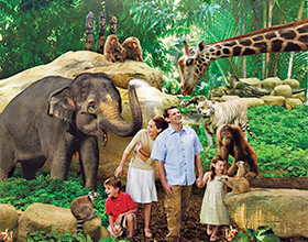 Singapore Zoo Child Admission + Tram Ride (aged 3-12)