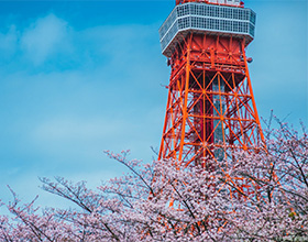 [Ticket] Tokyo Tower Main Observatory Child Admission (aged 7-14)