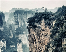 [1-Day Tour] Zhangjiajie Grand Canyon & Glass-bottomed Bridge (Group)
