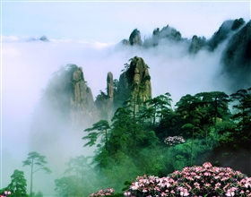 [5-Day Tour] Huang Shan, Qiandao Lake & Hangzhou Highlights (Private)