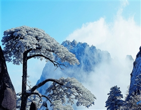 [4-Day Tour] Classic Hongcun & Huang Shan Tour (Private)