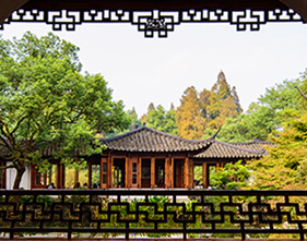 [1-Day Tour] Serenity & Beauty of Nature in Hangzhou (Private, no-shopping)