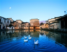 [Half-Day Tour] Hongcun Village (Group)
