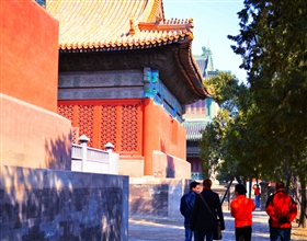 [1-Day Tour] Forbidden City In-depth Discovery (VIP Small Group, no-shopping, includes lunch)<br>[Visa Exclusive 2017]