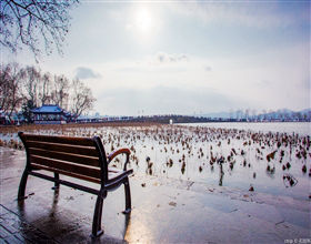 [1-Day Tour] Serenity & Beauty of Nature in Hangzhou (Private, includes lunch)