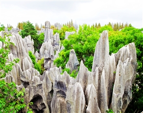 [1-Day Tour] Kunming Stone Forest & Jiuxiang Cave (Group, includes lunch)<br>[Visa Exclusive 2017]