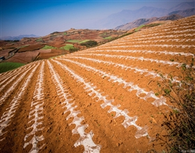[2-Day Tour] Dongchuan Red Soil Land (Private, local hotel)