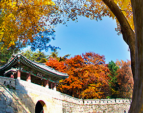 [2-Day Tour] Gyeongsangbuk Excursion | K-TRAVEL BUS (Group, depart Seoul)