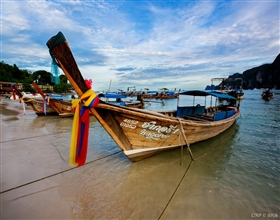 [1-Day Tour] Andaman Sea (Phi Phi Island) by Speedboat (Group, includes lunch)