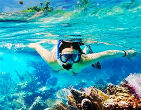 [1-Day Tour] Koh Tao & Koh Nang Yuan Snorkeling by Speedboat (Group, includes lunch)