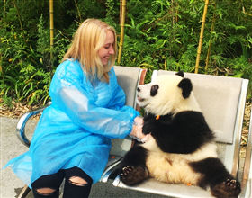 [1-Day Tour] Dujiangyan Panda Base Holding/Feeding Program (Private, depart Chengdu)