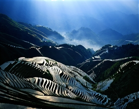 [1-Day Tour] Longji Rice Terraces (Private)