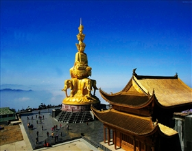 [2-Day Tour] Panda Base, Giant Buddha & Emei Shan with bullet train (Group, no-shopping, 4-star)