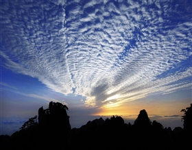 [1-Day Tour] Huang Shan Highlights (Private, no-shopping)
