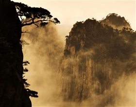 [1-Day Tour] Classic Huang Shan (Group, no-shopping)