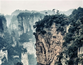 [2-Day Tour] Classic Huang Shan (Group, no-shopping)