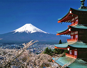 [8-Day Tour] Discover Japan (4-Star, Group, no-shopping)